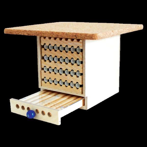 Dorlotoir-cabane-abeilles